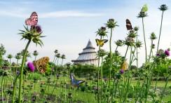 Die Geschichte der Bundesgartenschau