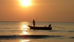 Tipps und Tricks für mehr Fische beim Angeln