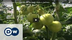 Trend Urban Gardening – Gärten in der Großstadt
